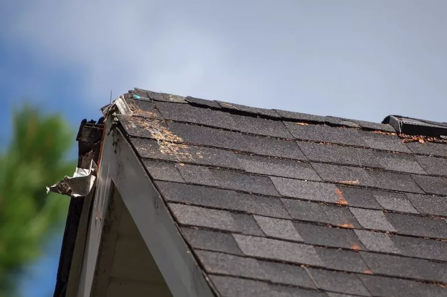 What Factors Determine the Cost of My Roof Replacement